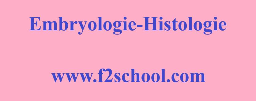 Photo: Embryologie - Histologie : Cours-Résumés-TP-TD-Examens