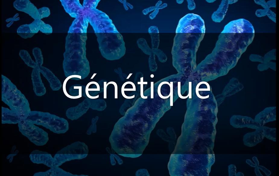 Photo : Génétique : Cours - Résumé - TD et Examens corrigés