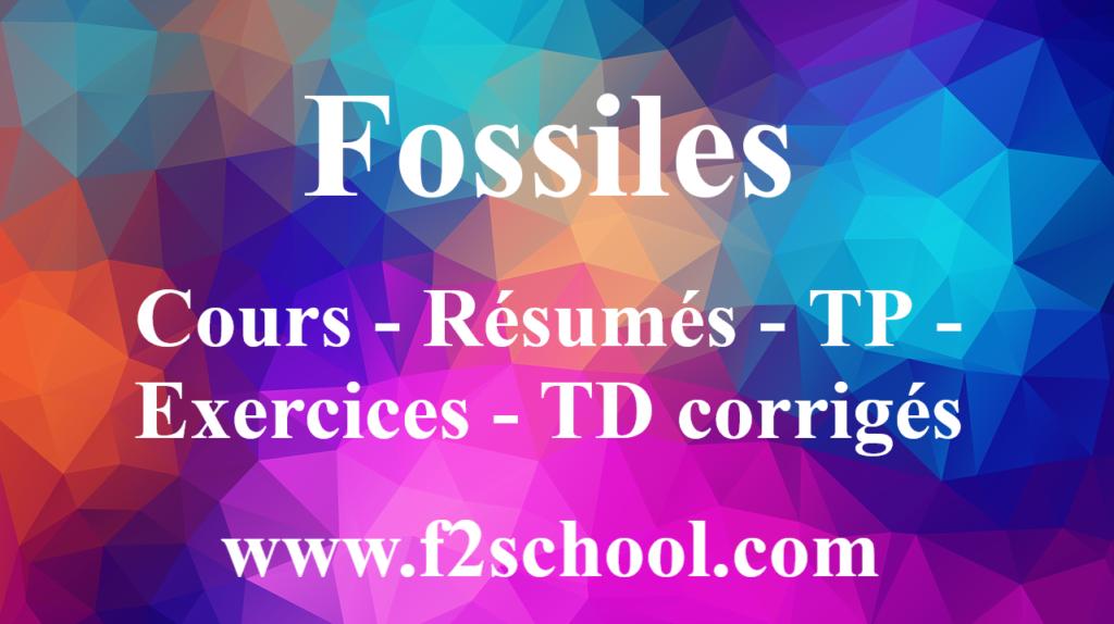 Fossiles : Cours-Résumés-TP-Exercices- TD corrigés