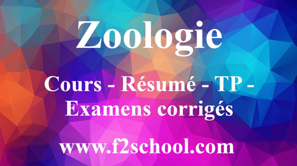 Zoologie : Cours - Résumé - TP - Examens corrigés